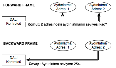 DALI Forward Frame & Backward Frame Örneği